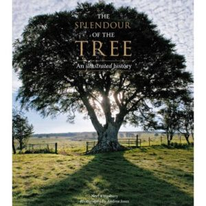 The Splendour of the Tree : An Illustrated History